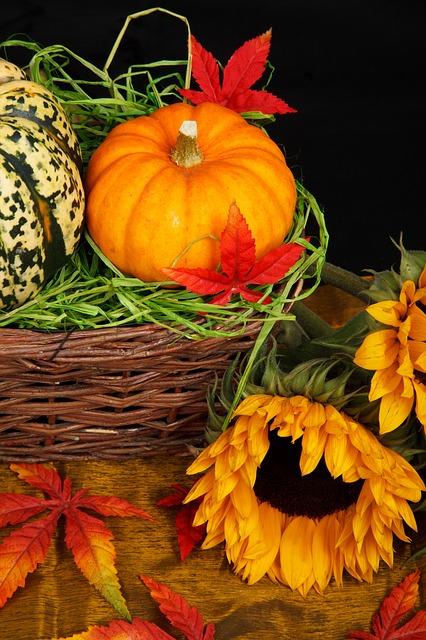 autumn-21454_640 (2)